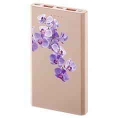 Аккумулятор INTERSTEP PB10000MC орхидея коробка