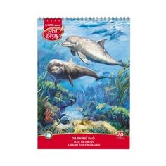 Альбом для рисования на спирали ArtBerry® Дельфин, А4, 20 листов Erich Krause