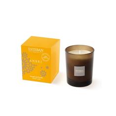 Ароматическая свеча Esteban Амбра 170 г мокко