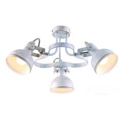 Светильник потолочный Arte Lamp A5216PL-3WG