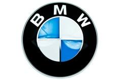 Боковое зеркало заднего вида BMW 51167437158