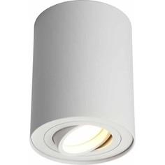 Потолочный светильник Omnilux OML-101009-01