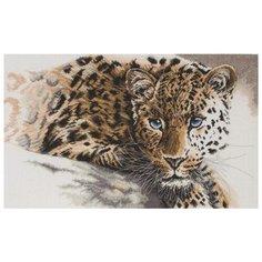 Maia Набор для вышивания Редкая красота 45 х 27 см (01231-5678000)
