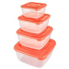 Plast Team Набор контейнеров квадратных Polar коралловый