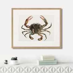 Картина Картины в Квартиру Marine life №2 1725г (42х52 см)
