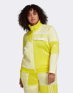 Желтая олимпийка adidas Originals Plus x Danielle Cathari Plus-Желтый