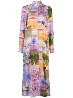 Cynthia Rowley платье-рубашка Reeve длины макси