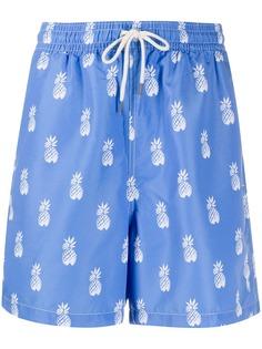 Polo Ralph Lauren плавки-шорты с принтом
