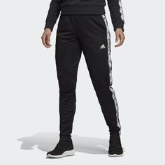 Брюки Tiro 19 Training adidas Performance