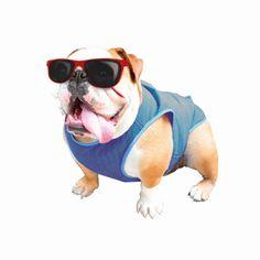Жилет для собак Nobby Cooling-West, охлаждающий, голубой, 20 х 30 см
