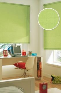 Рулонные шторы Eskar 31014057170 зеленый 57x170