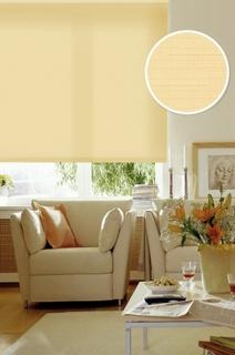 Рулонные шторы Eskar 31112115170 оранжевый 115x170