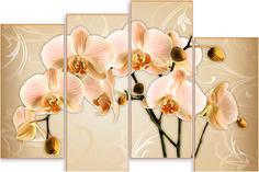 Картина модульная на холсте Модулка Нежно-оранжевые орхидеи 170х116 см