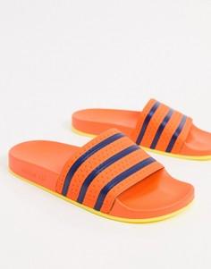 Оранжевые шлепанцы adidas Originals Adilette-Оранжевый