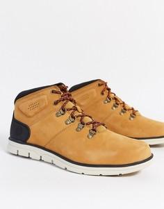 Походные ботинки Timberland-Бежевый
