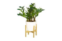 Подставка для комнатных растений Oxalis Hoff