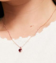 Подарочный набор: ожерелье и серьги цвета розового золота с красными подвесками-камнями в виде сердечка Ted Baker Hadeya-Золотистый