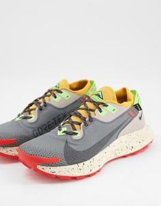Серые кроссовки Nike Running Pegasus Trail 2 Gortex-Серый