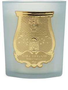 Cire Trudon ароматическая свеча Josephine (270 г)