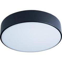 Светильник Loft IT Потолочный светодиодный Axel 10002/12 black