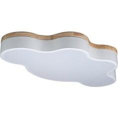 Светильник Loft IT Потолочный светодиодный Axel 10005/36 white