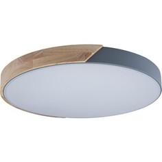 Светильник Loft IT Потолочный светодиодный Axel 10004/36 grey