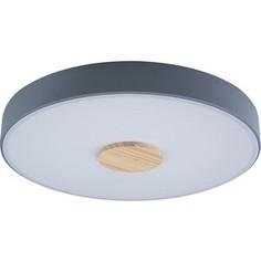 Светильник Loft IT Потолочный светодиодный Axel 10003/24 grey