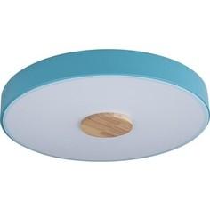 Светильник Loft IT Потолочный светодиодный Axel 10003/24 blue