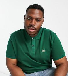 Темно-зеленая узкая футболка-поло из пике Lacoste-Зеленый цвет