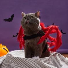 1шт костюм с декором паука для кошек Shein