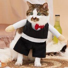 Костюм для домашних животных в форме официанта Shein