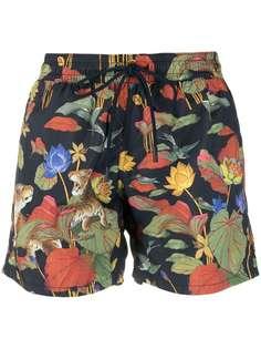 Etro плавки-шорты с принтом Lily