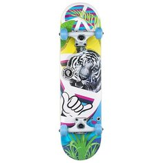 Скейтборд Plank Ptigy, 31x8, белый/голубой/зеленый