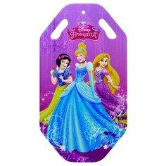 Ледянка 1 TOY Принцессы (Т58167) фиолетовый