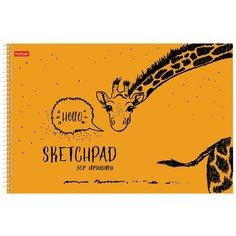 Альбом для рисования Hatber SketchPad 29.7 х 21 см (A4), 100 г/м², 40 л.
