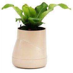 """Горшок цветочный """"Hill Pot"""" большой, цвет: кремовый Qualy"""