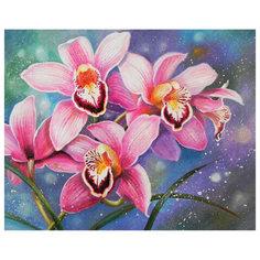 Картина по номерам 40*50 см, ОСТРОВ СОКРОВИЩ Орхидеи, на подрамнике, акрил, кисти, 662908