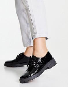 Черные ботинки на шнуровке и плоской подошве с эффектом крокодиловой кожи Miss Selfridge Lila-Черный цвет