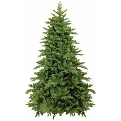 Царь елка Ель Абсолют, 185 см