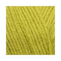 Пряжа для вязания ПЕХ Уютная (85% акрил, 15% полиамид) 5х100г/230м цв.037 липа Пехорка ПЕХ.уютная.037