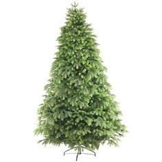 Царь елка Ель Беверли, 120 см