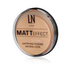 LN-professional Компактная матирующая пудра Matt Effect 102