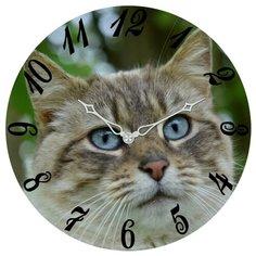 Настенные часы SvS 3003200 СВС