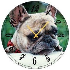 SvS Настенные часы SvS 3001871 Собакен СВС