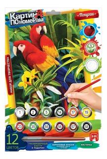 Раскраска по номерам Попугаи на картоне Danko Toys средняя